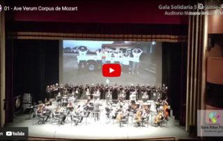 Gala Solidaria en auditorio Maestro Padilla - Sara Allut Plata